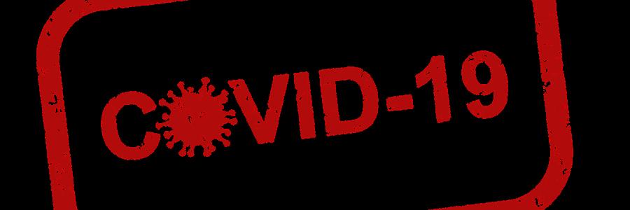 Stop Covid: la CNIL rend son avis sur le projet d'application de tracing